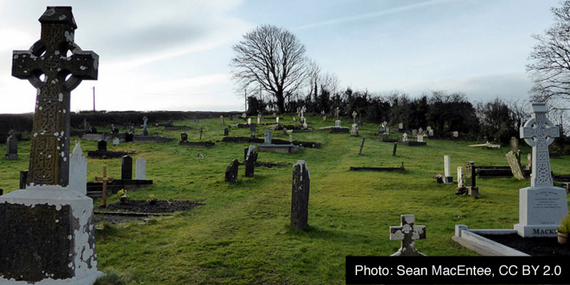 A grave yard in winter, with a bare tree in the background and short bright green grass between the lichen-covered graves.